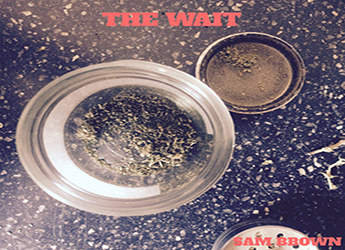 Sam Brown - The Wait