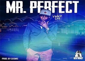 Yinka Diz - Mr. Perfect